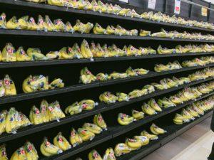 大量のバナナが壁面に陳列
