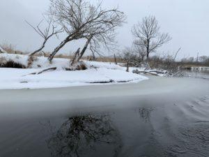 川岸から段々凍りかけている水面はグラデーションになっていてとっても美しかった