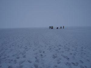 どこまでも氷の大地が広がっています
