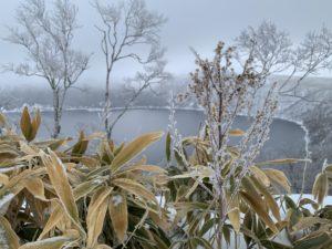 霧氷は樹氷、粗氷、樹霜の3つ種類がある
