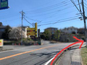 バスを降りたら、バスで来た道を信号まで戻ります