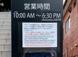 【鎌倉】豆柴カフェの入場までの注意点