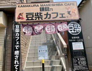 鎌倉乃フクロウの森と同じ会社が運営している鎌倉乃豆柴カフェ。