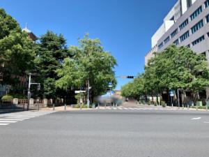 日本大通りはイチョウ並木が綺麗な通りです。イチョウ並木を眺めながらのお散歩は気持ちいいです。